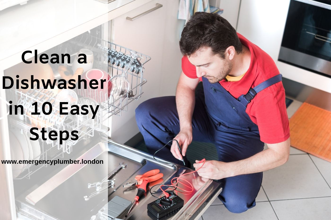 10 Easy Steps to Clean Your Dishwasher