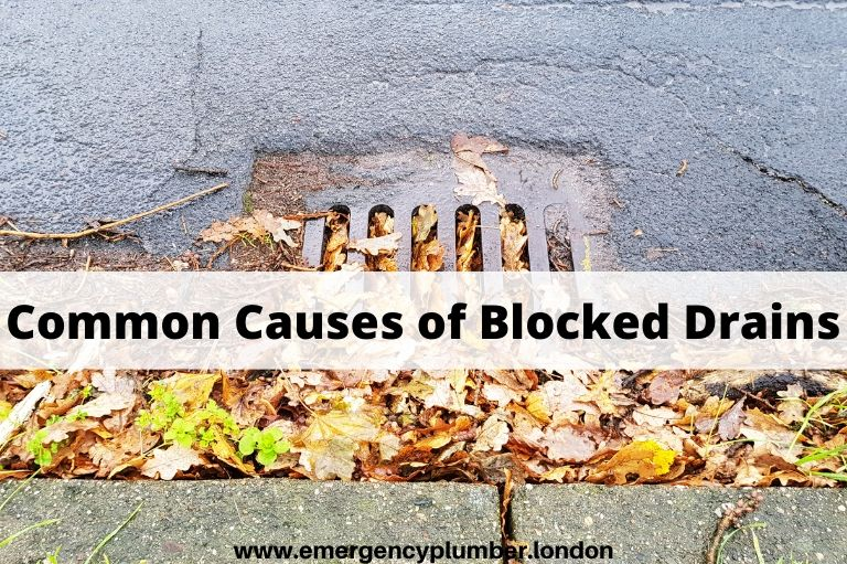 Most Common Causes of Clogged Drains and How to Prevent Them